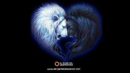 Yin y Yang - La Unidad / Sarkhan